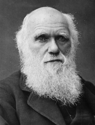 Charles Darwin profile picture