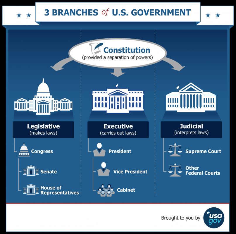 3 branches of the government infographic