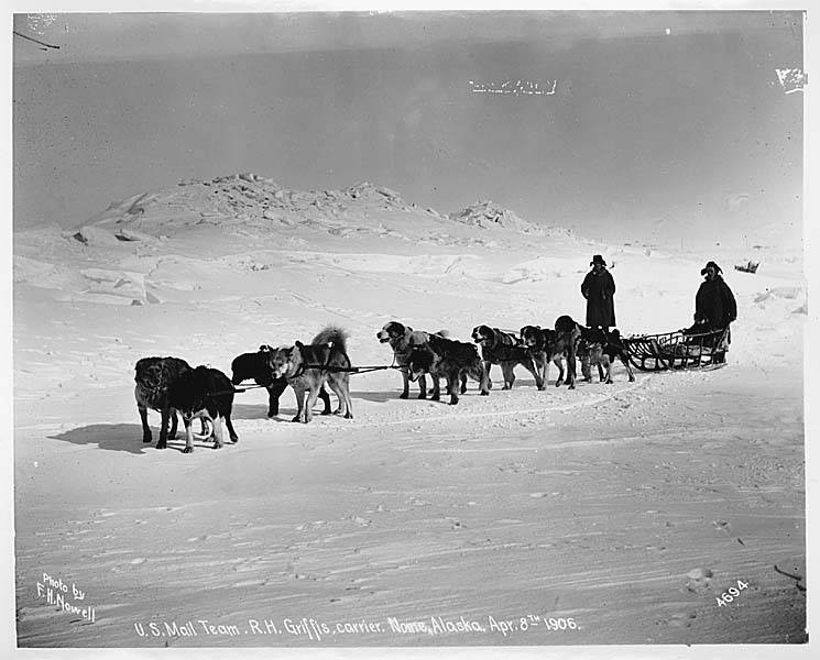 US Mail Dogsled Team in Alaska