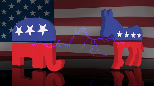 Image of an elephant and donkey with stars and stripes pattern