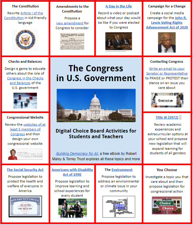 choice board of congress in U.S. Government