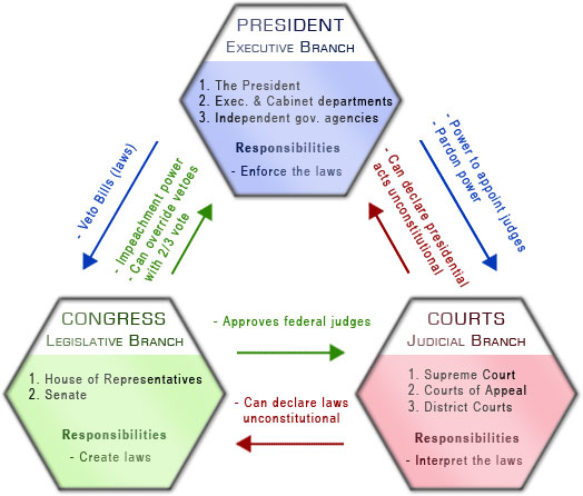 Infographic displaying the checks and balances of the 3 branches of government