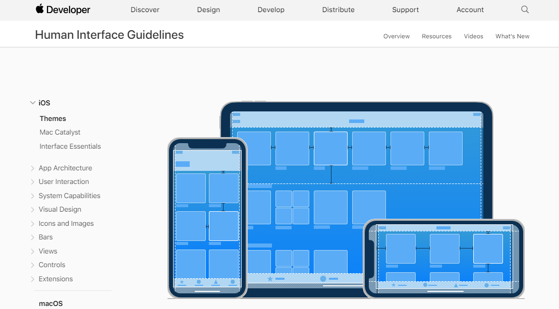 preview of the apple human interface design website