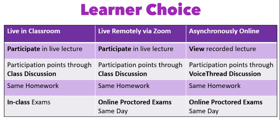 fig3-3-5learnerchoice.png