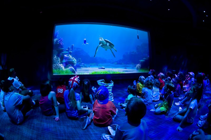 """Image of children watching the """"Turtle Talk"""" show at Disney World."""