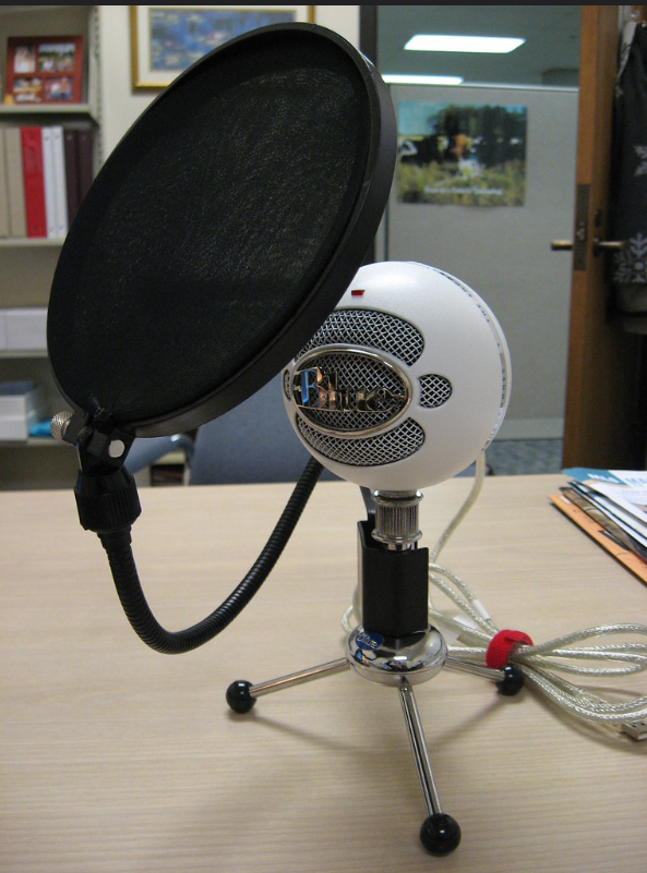 Image of microphone with a pop filter.