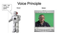 Voice Principle Example