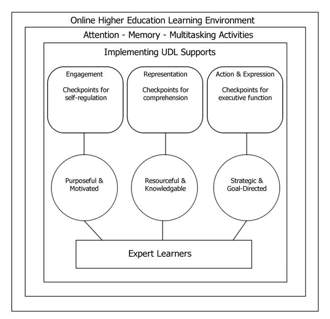 The conceptual framework was adapted from CAST's (2018). Universal Design for Learning Guidelines Version 2.2.