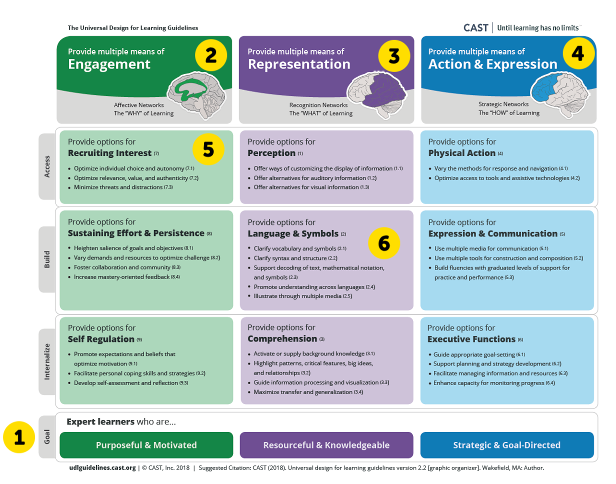 A graphic organizer of UDL guidelines