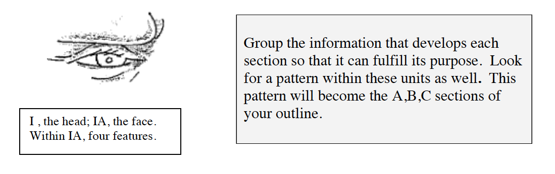 Group the information that develops each section so that it can fulfill its purpose. Look for a pattern within these units as well. This pattern will become the A, B, and C sections of your outline.