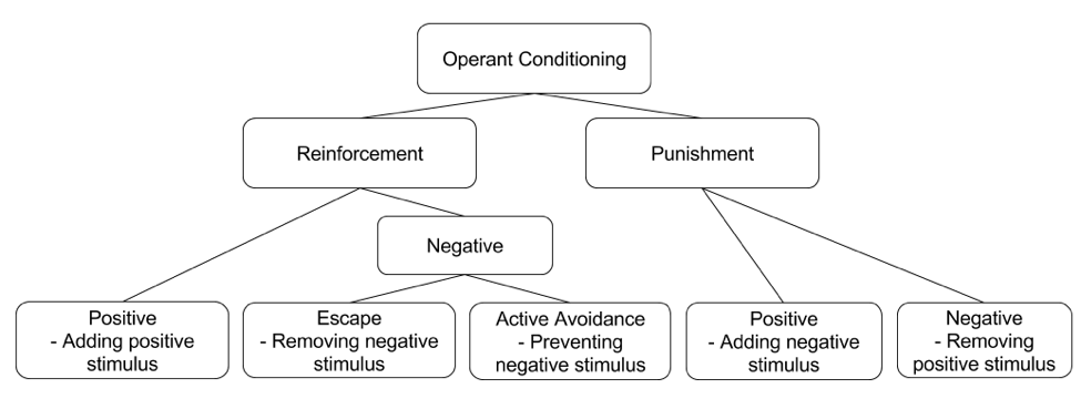 five categories of operant conditioning