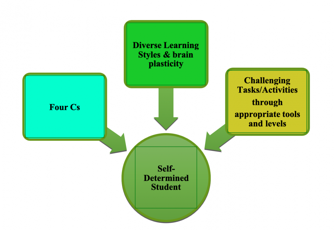 Shows the three areas that make up a self-determined student: four Cs, diverse learning styles and brain plasticity, and challenging tasks/activities.