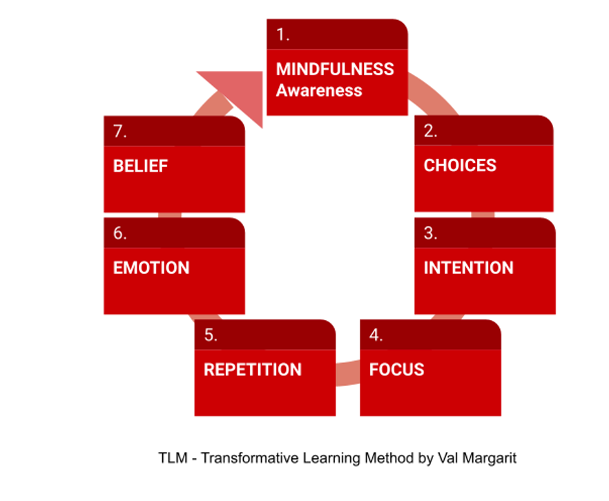 Seven strategies for learners: mindfulness, choices, intention, focus, repetition, emotion, belief.