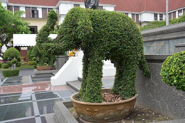 topiary-1430224_640.jpg